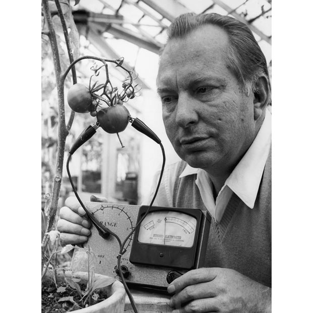 L. Ron Hubbard attaches an e-meter to a tomato plant